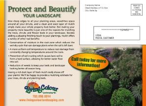 EDDM Postcards